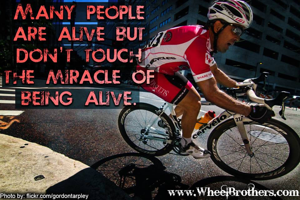 Miracle of Being Alive